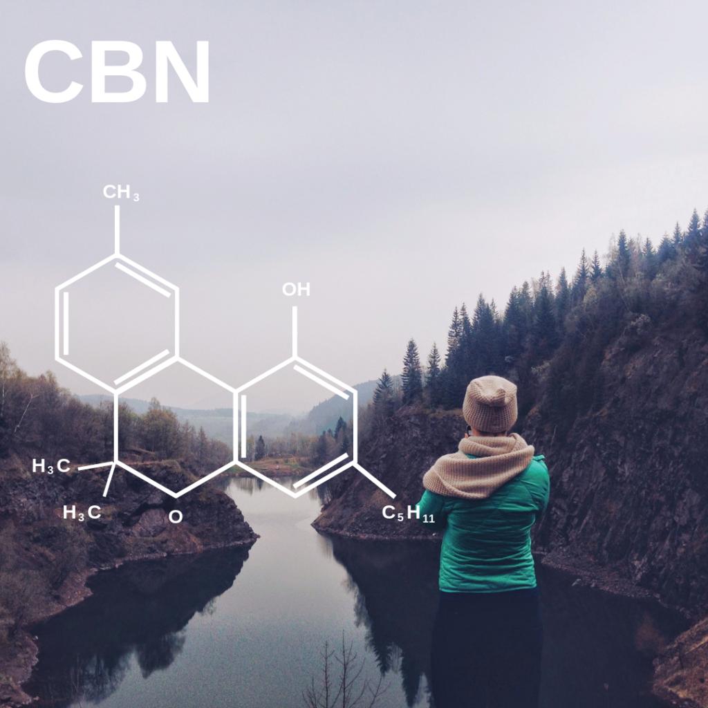 What is CBN? Cannabinol